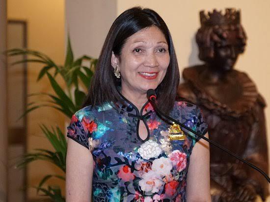 Genevieve Theseira-Haese, Lady Mayoress of Adelaide 2014-2018